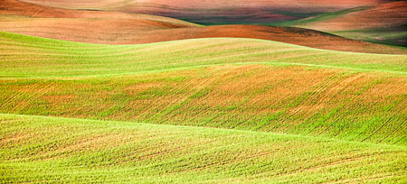 The rolling hills of the Palouse form an abstract image.