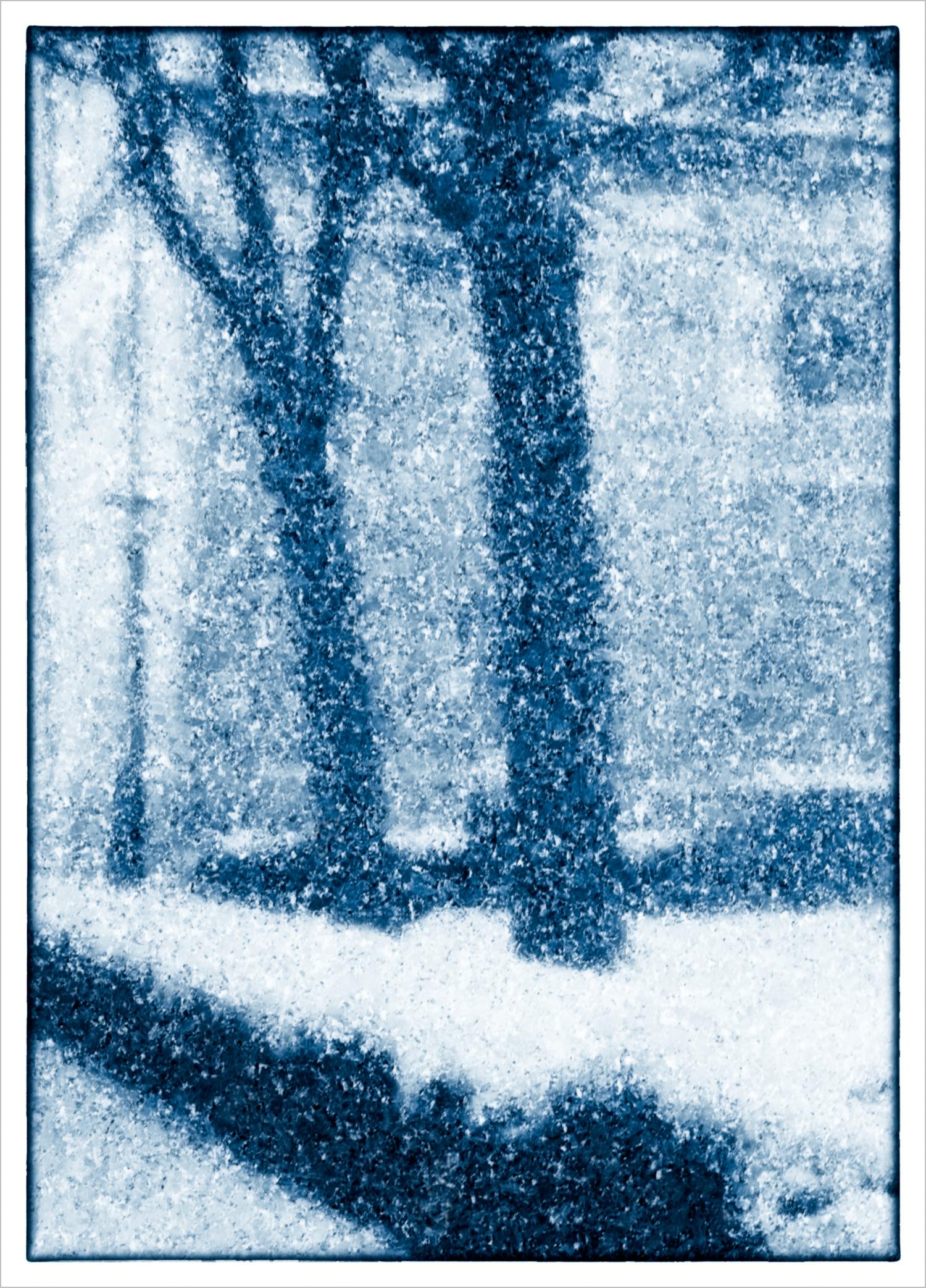 Snow  © Howard Grill