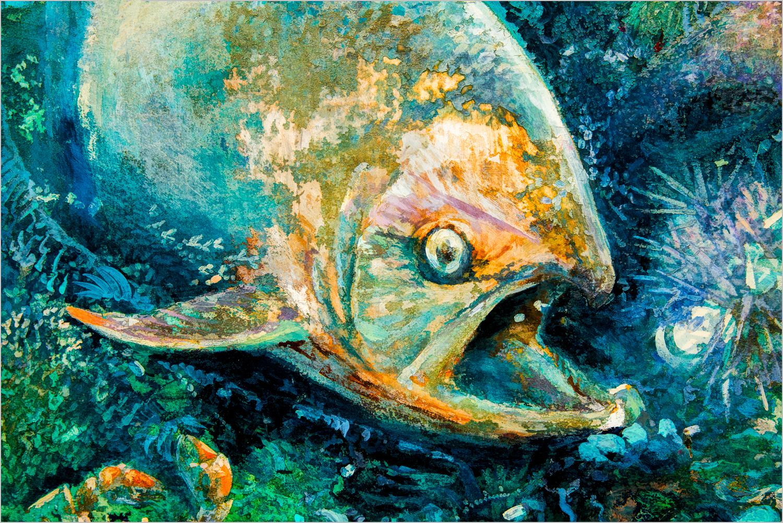 Something's Fishy  © Howard Grill