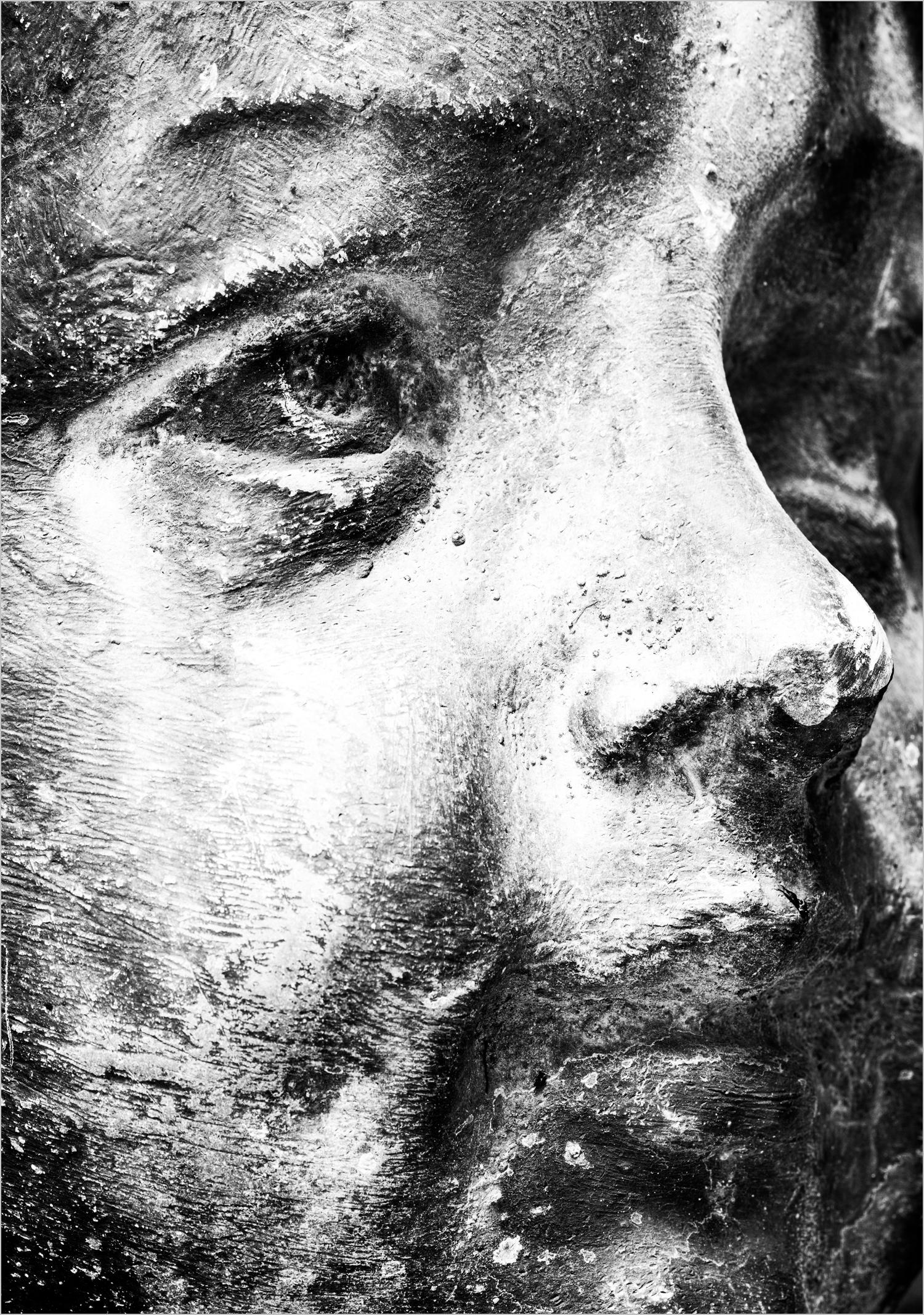 Bust  © Howard Groll
