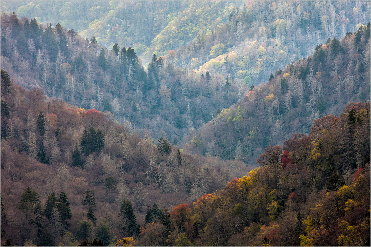 smoky mountains.jpg