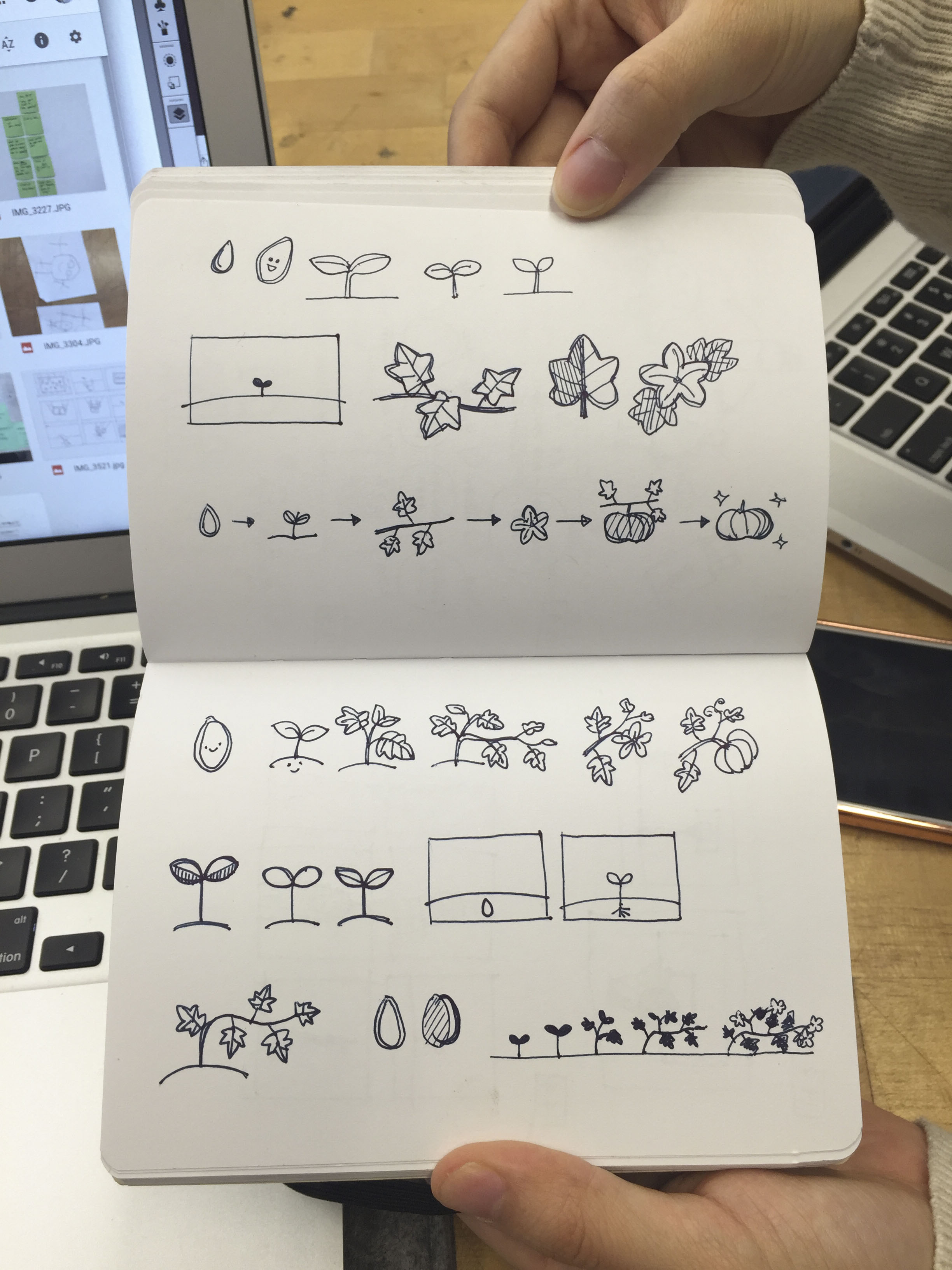 Graphic Translations