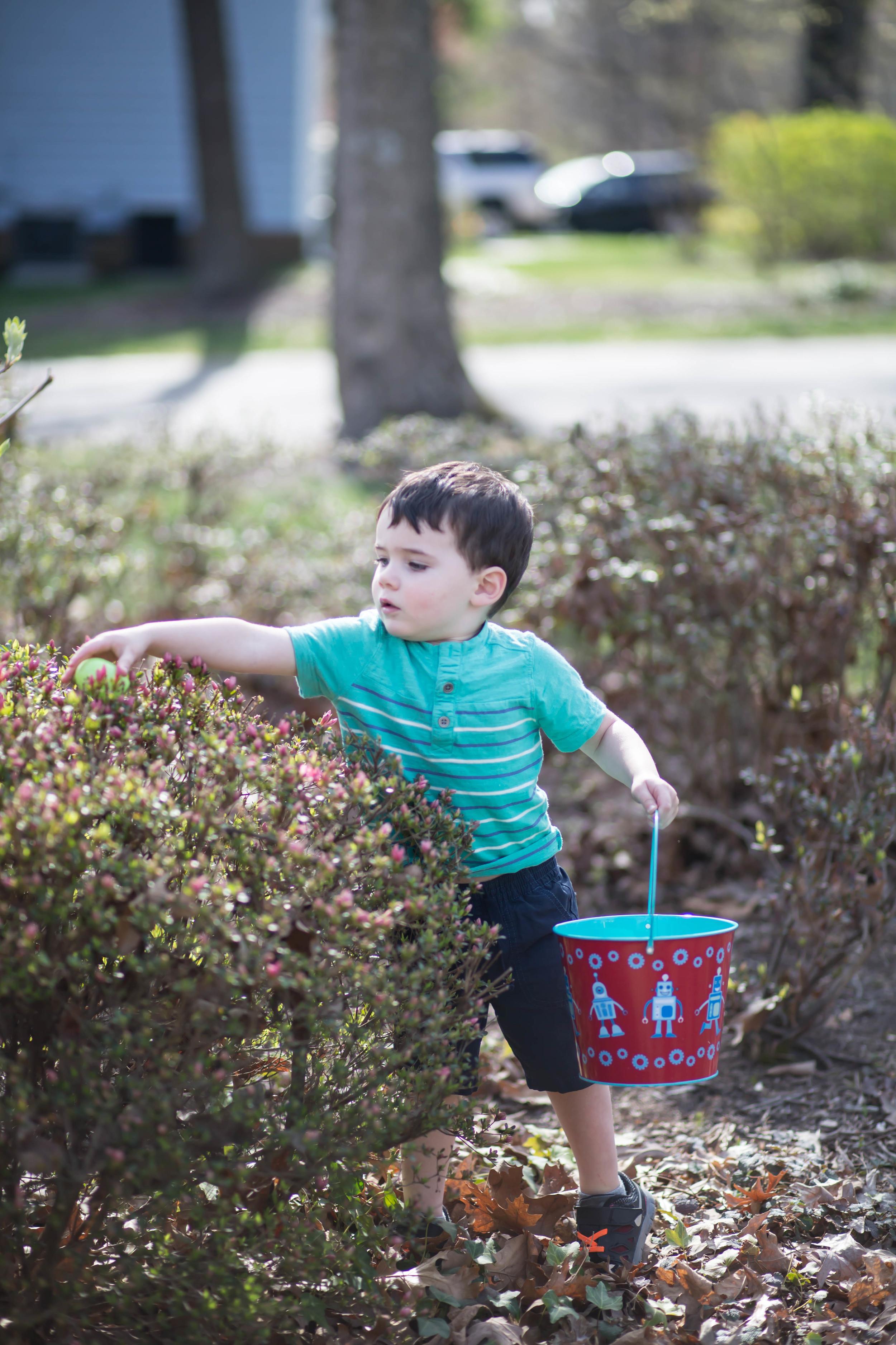boy child photo session nc