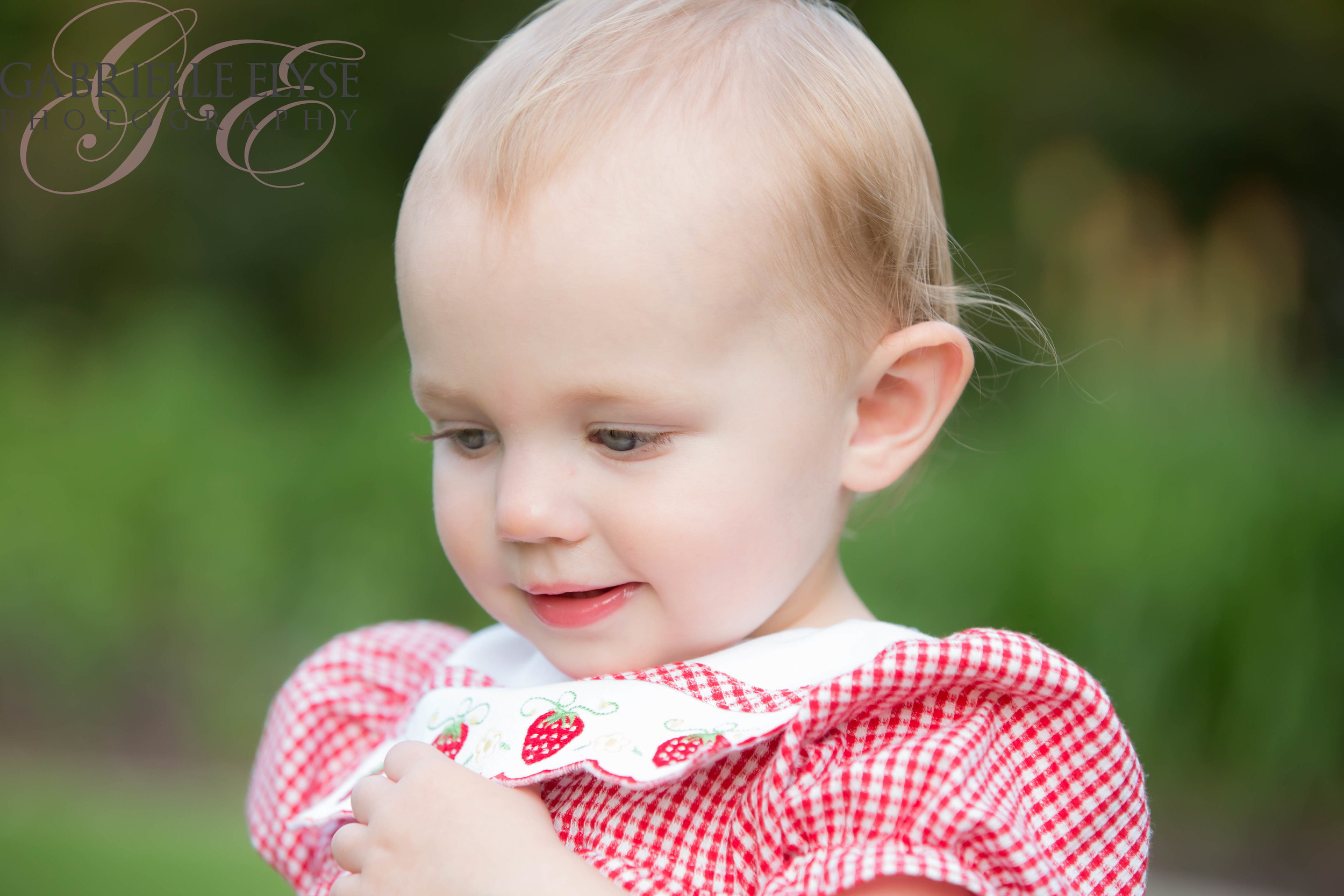 north raleigh toddler girl red dress