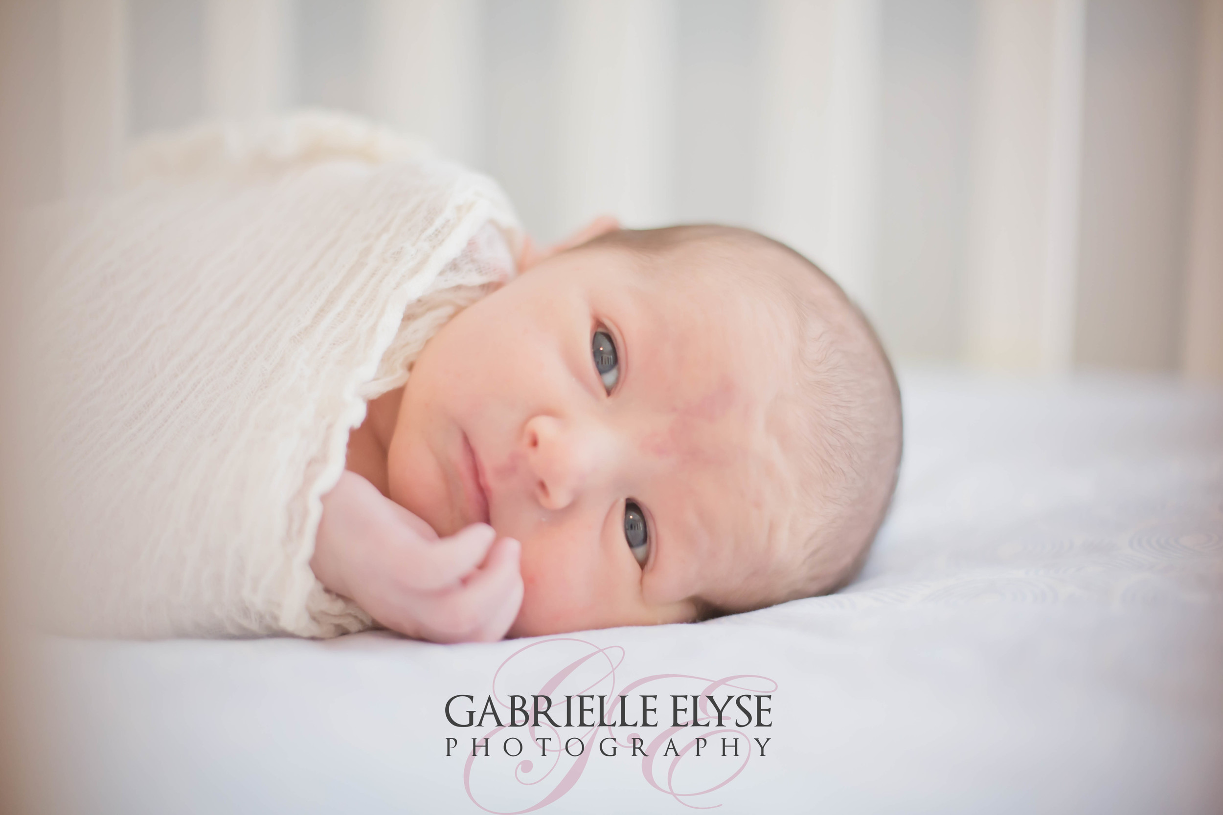 baby in crib newborn session