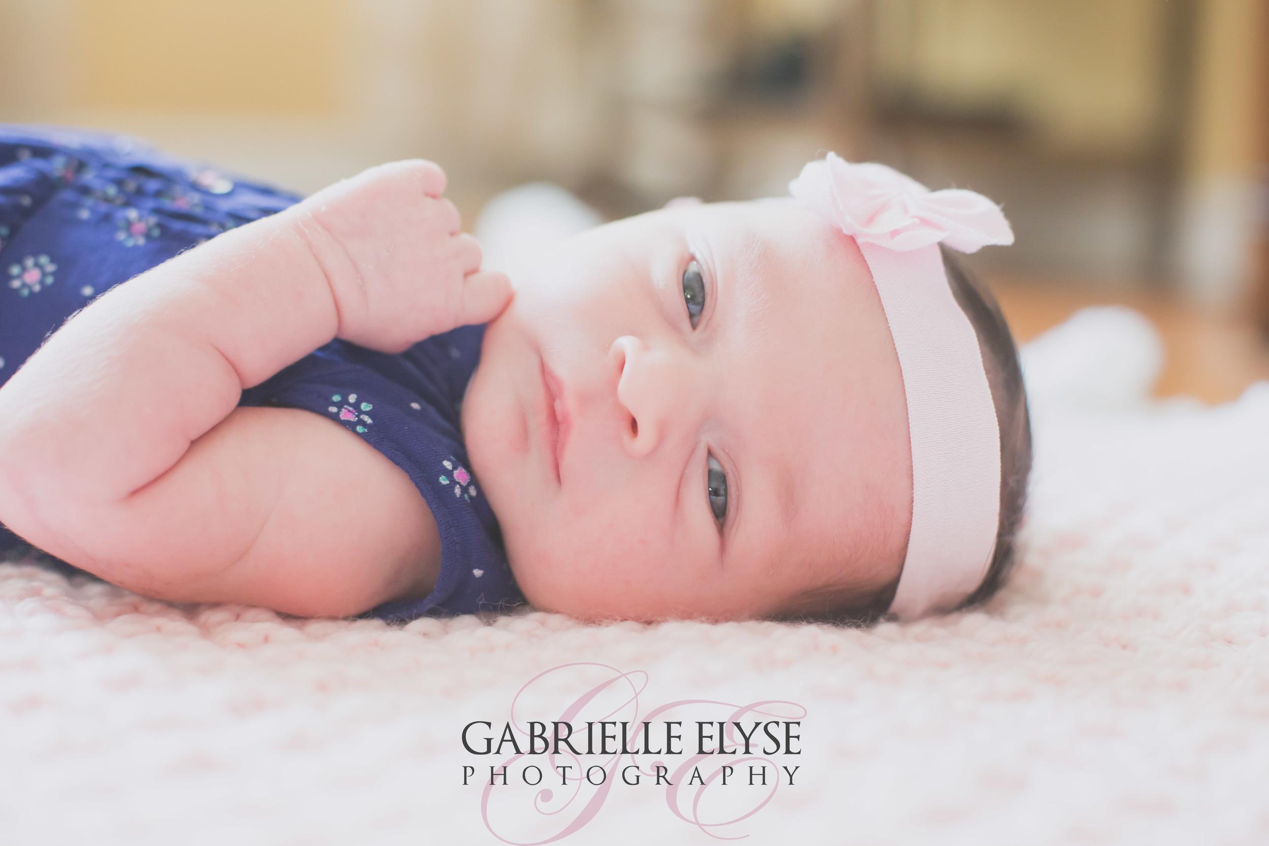 raleigh newborn lifestyle