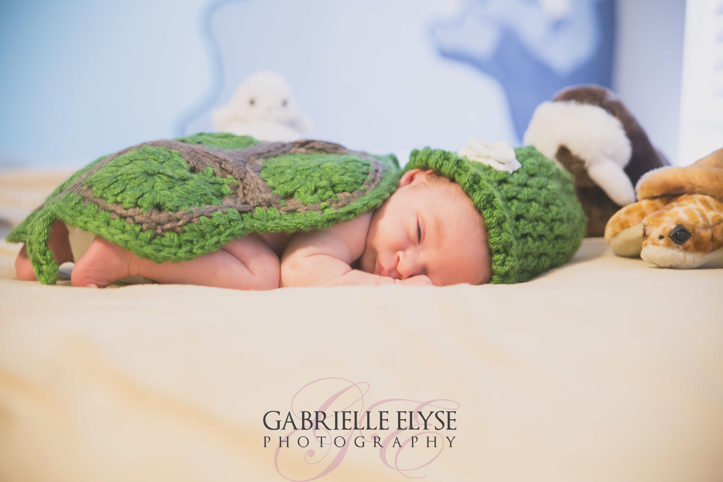 newborn raleigh florida photographer