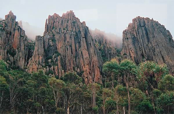 Organ pipes at Mt Wellington, above my place.