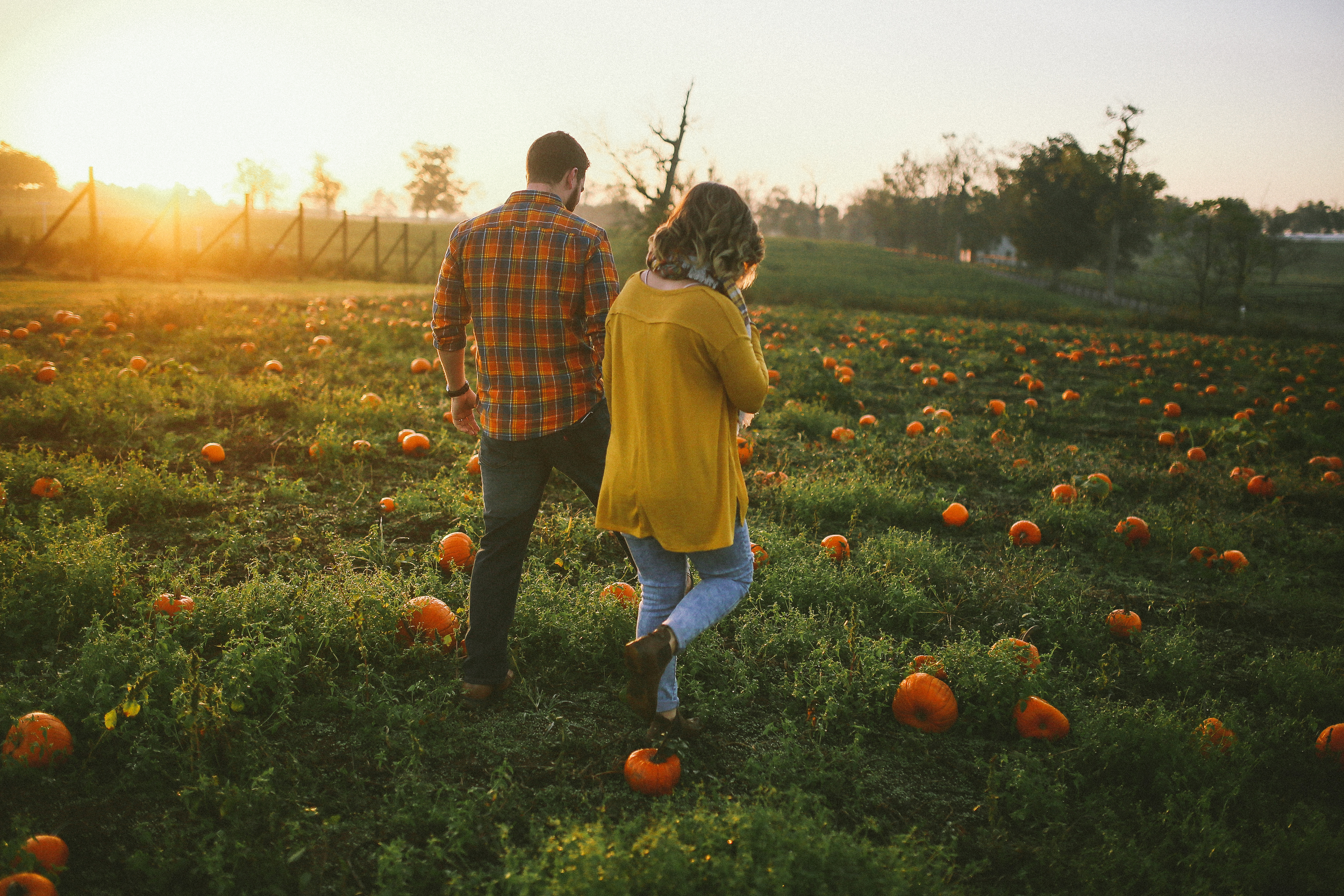 sunrise pumpkin patch engagement photography for adventure in kentucky