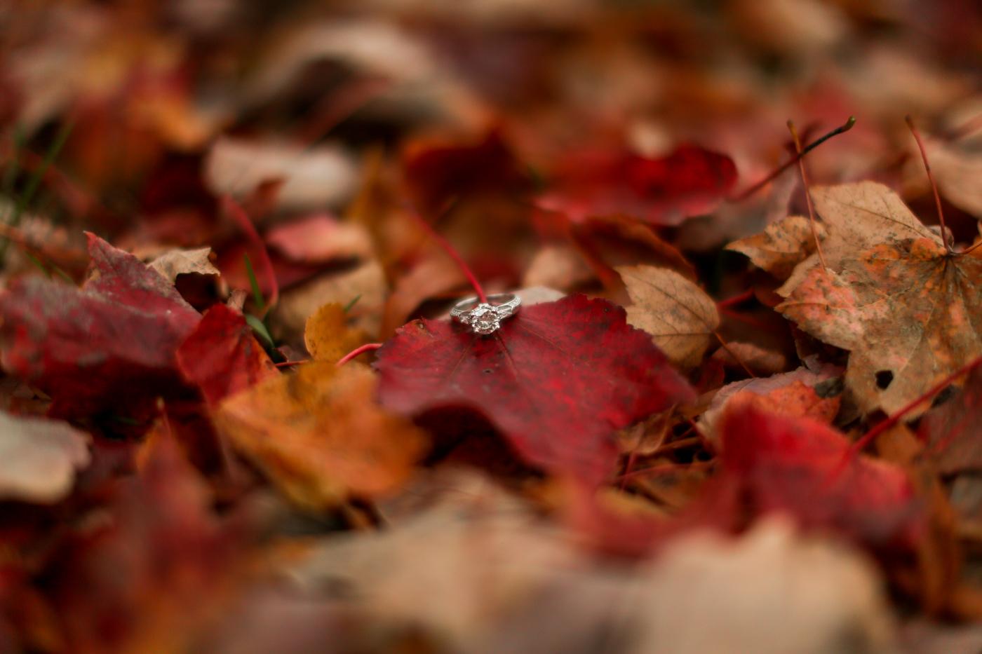 Fall-engagement-wedding-photographer-Kentucky-Bourbon-94.jpg