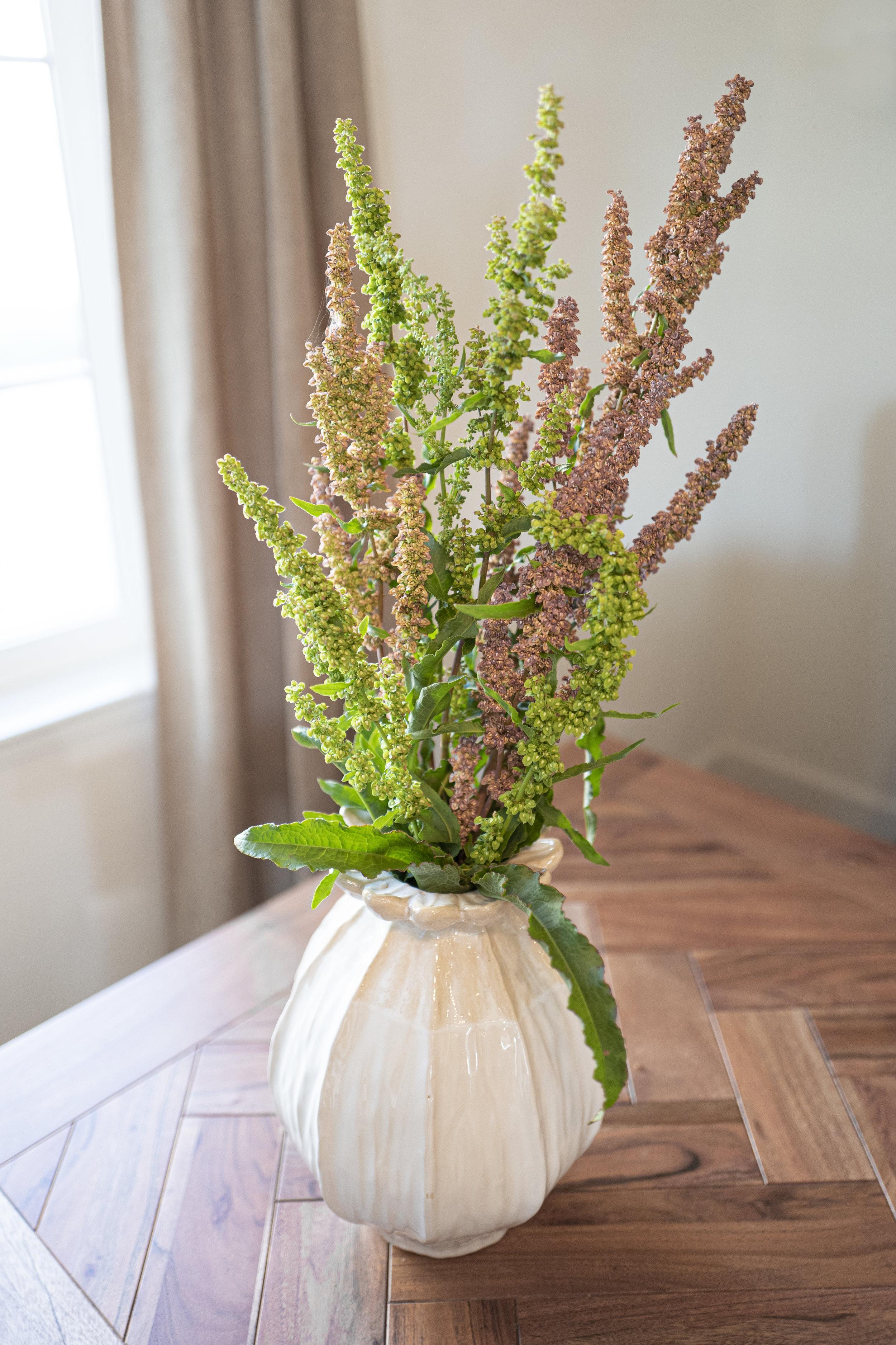 vase weed flower.jpg