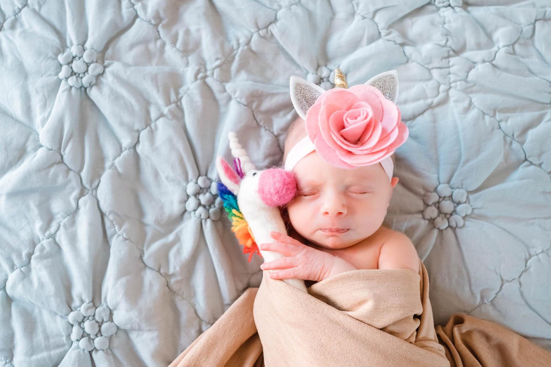 newborn-posed-with-unicorn-cute-chicago--2.jpg