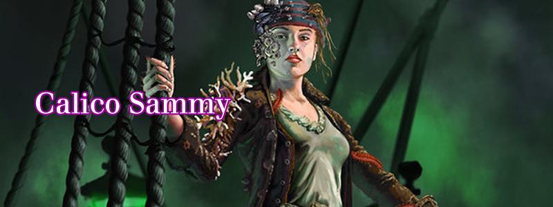 Calico Sammy ( Marrie Morgan sea pirate  by  Shane Braithwaite )