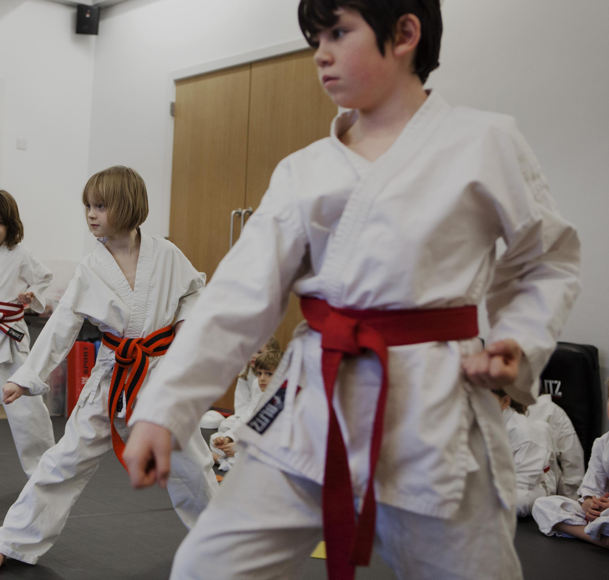 karate26crop.jpg