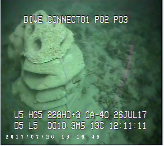 Ardrossan reef 6.JPG