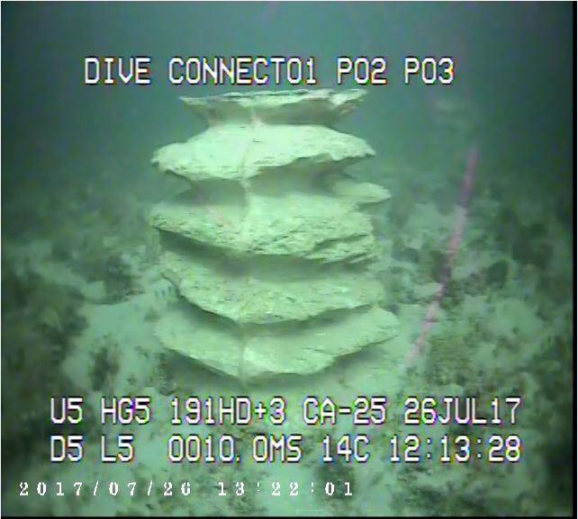 Ardrossan reef.JPG