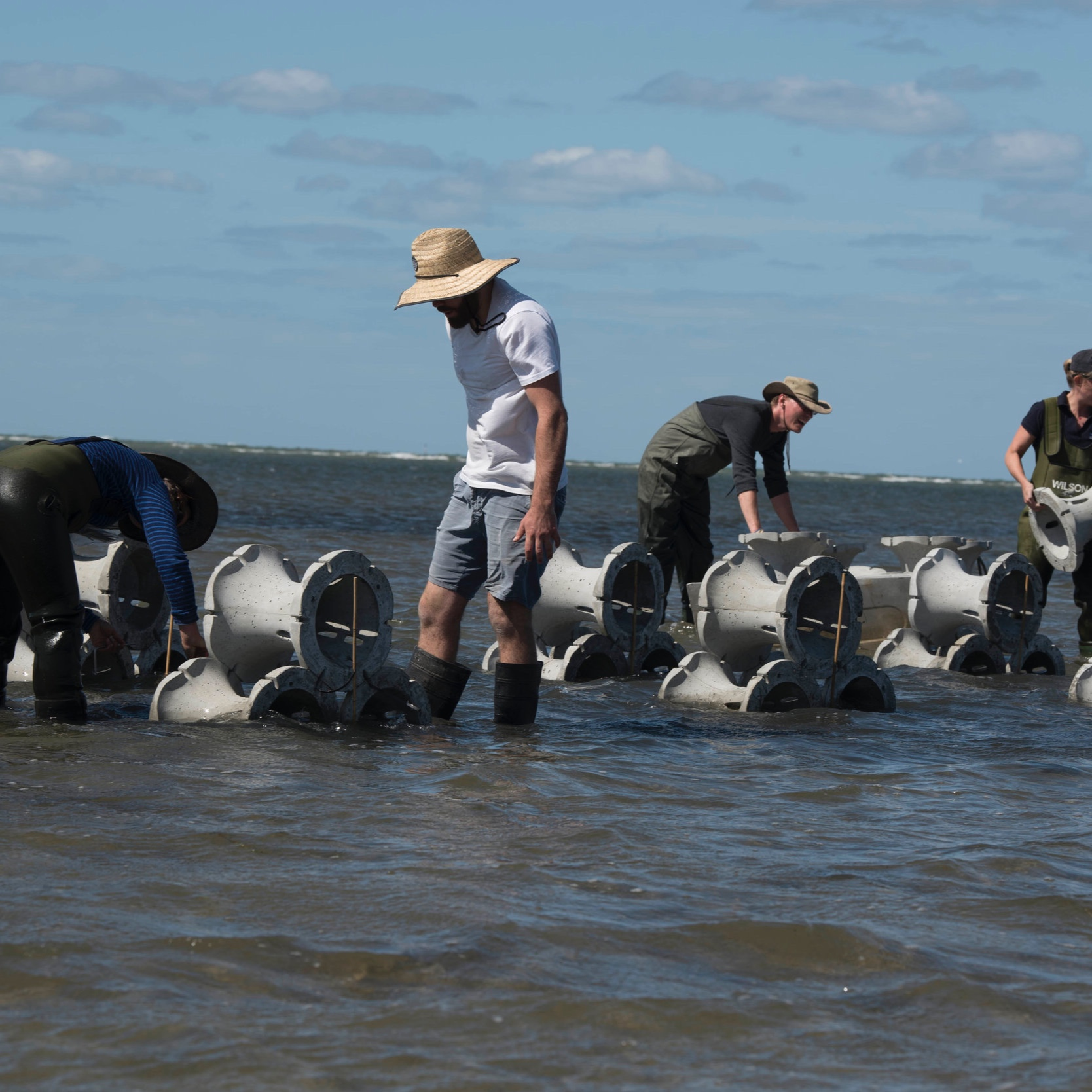 Hybrid coastal defence - We are working with researchers at Melbourne University to develop new approaches to coastal defence.