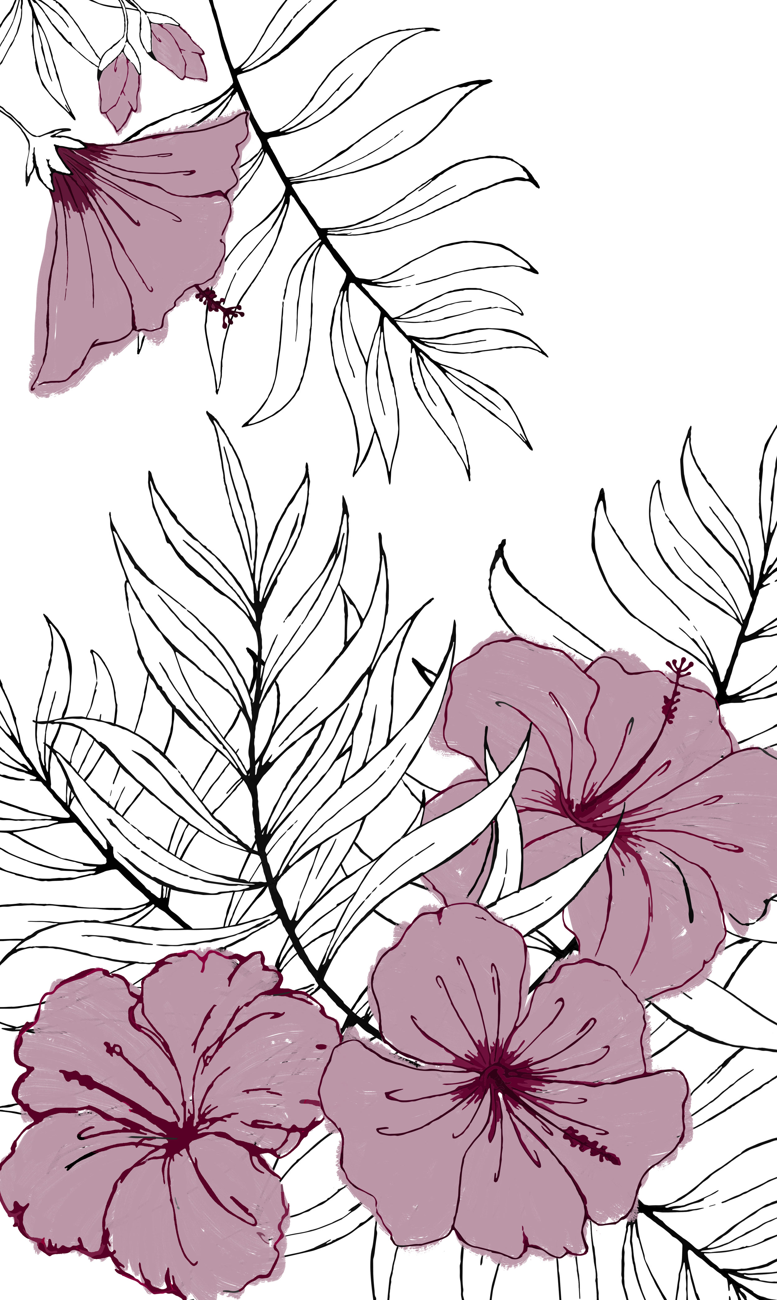 Large Scale Florals 3 - Hibiscus - color 2.jpg