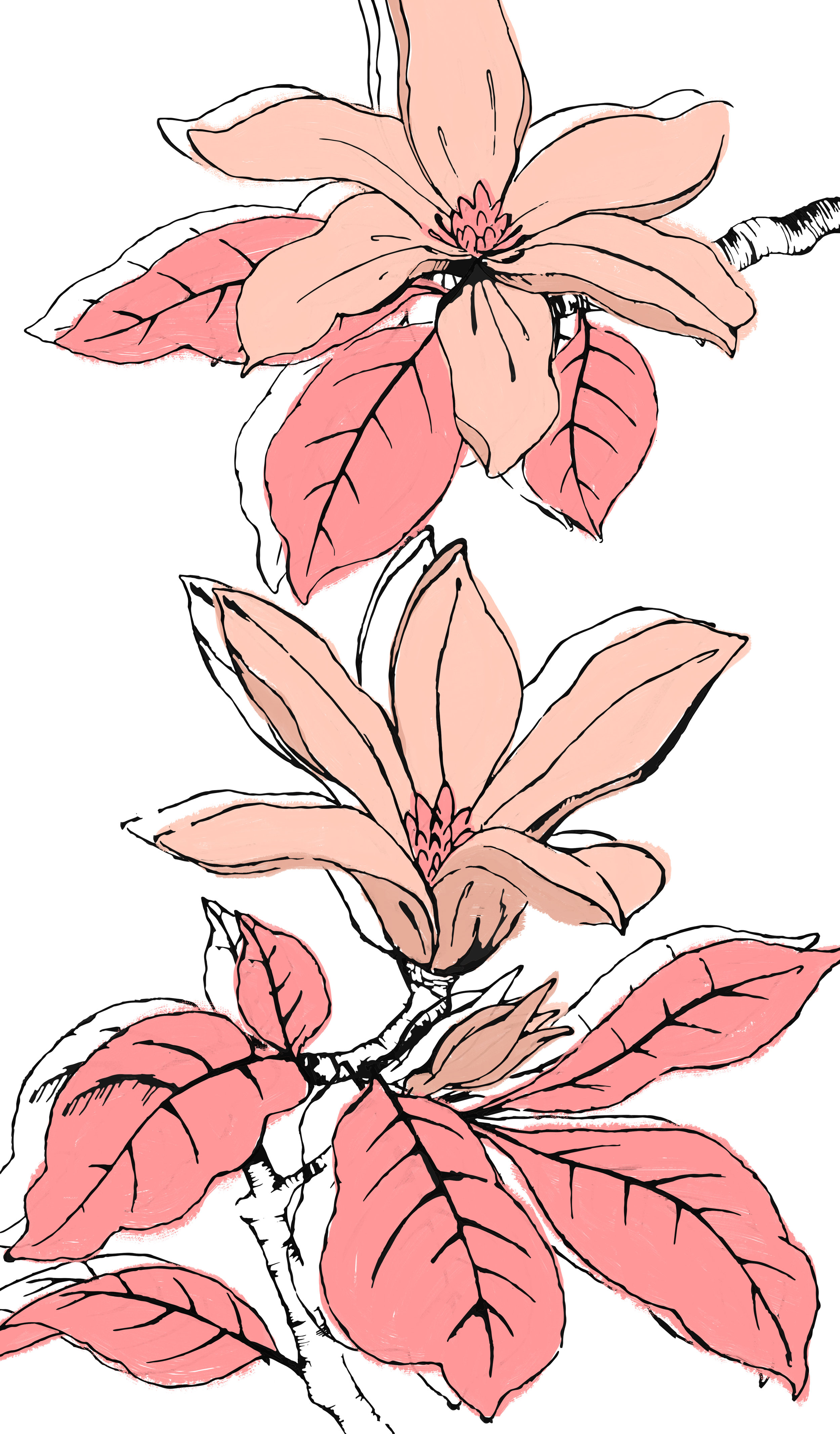 Large Scale Florals 1 - Lily.jpg