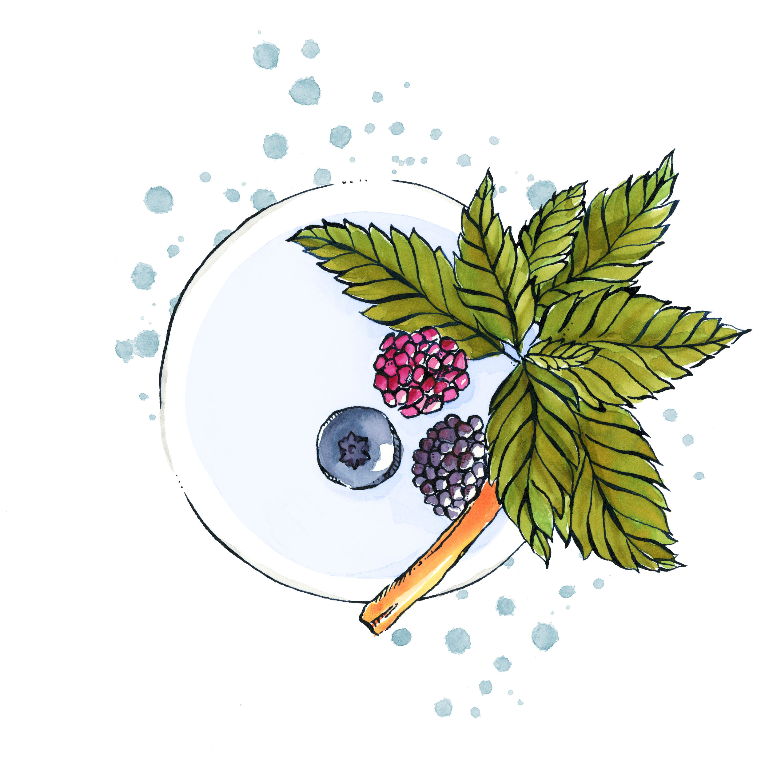 Cocktails- Berries.jpg