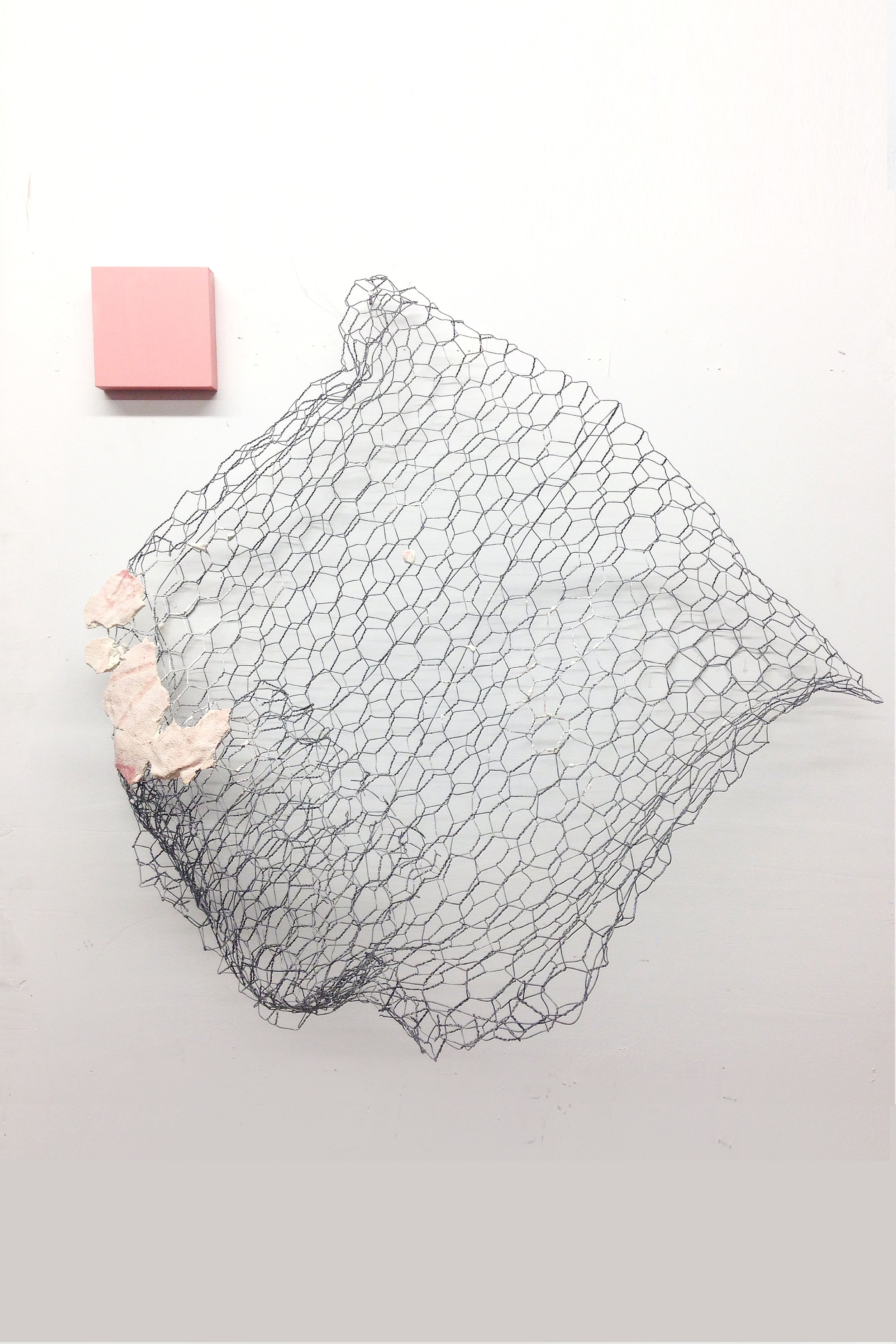 "TIBICOS   acrylic, pine, fabric residue on plaster chicken wire 24"" x 24"" x 10""  2014"