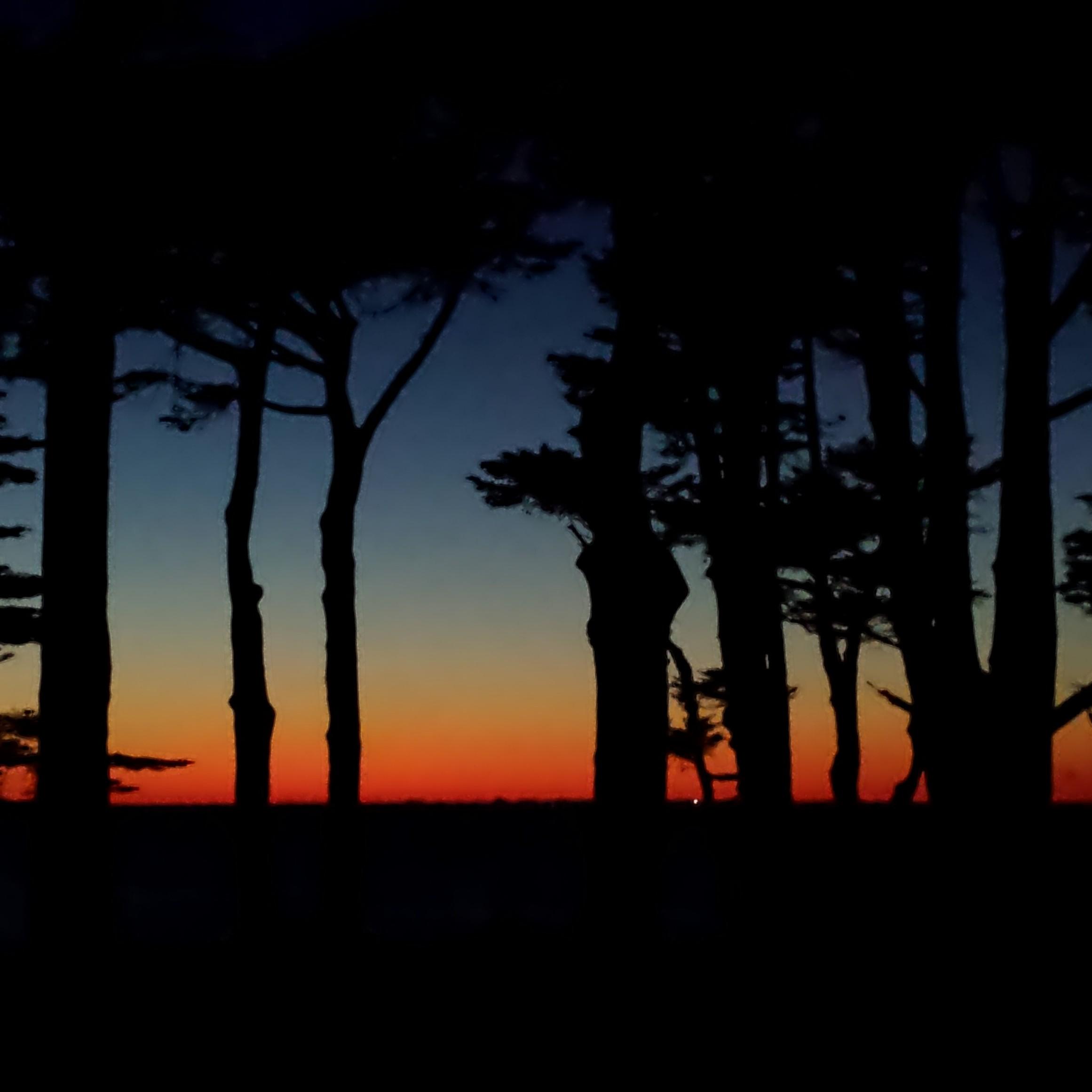 Sunset at Ocean Beach San Francisco Little Woof Pack
