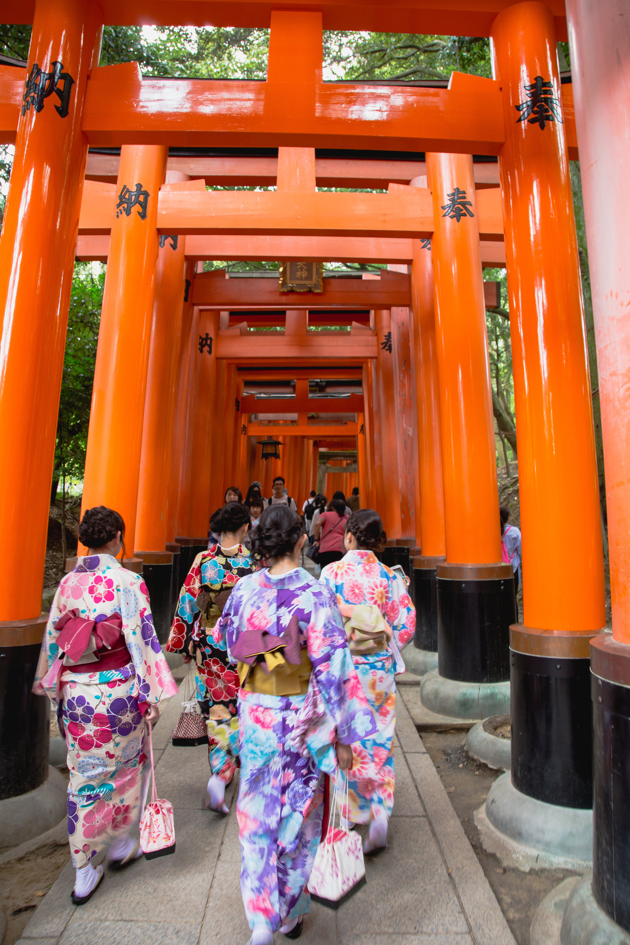 Kimono-clad at Fushimi Inari-taisha