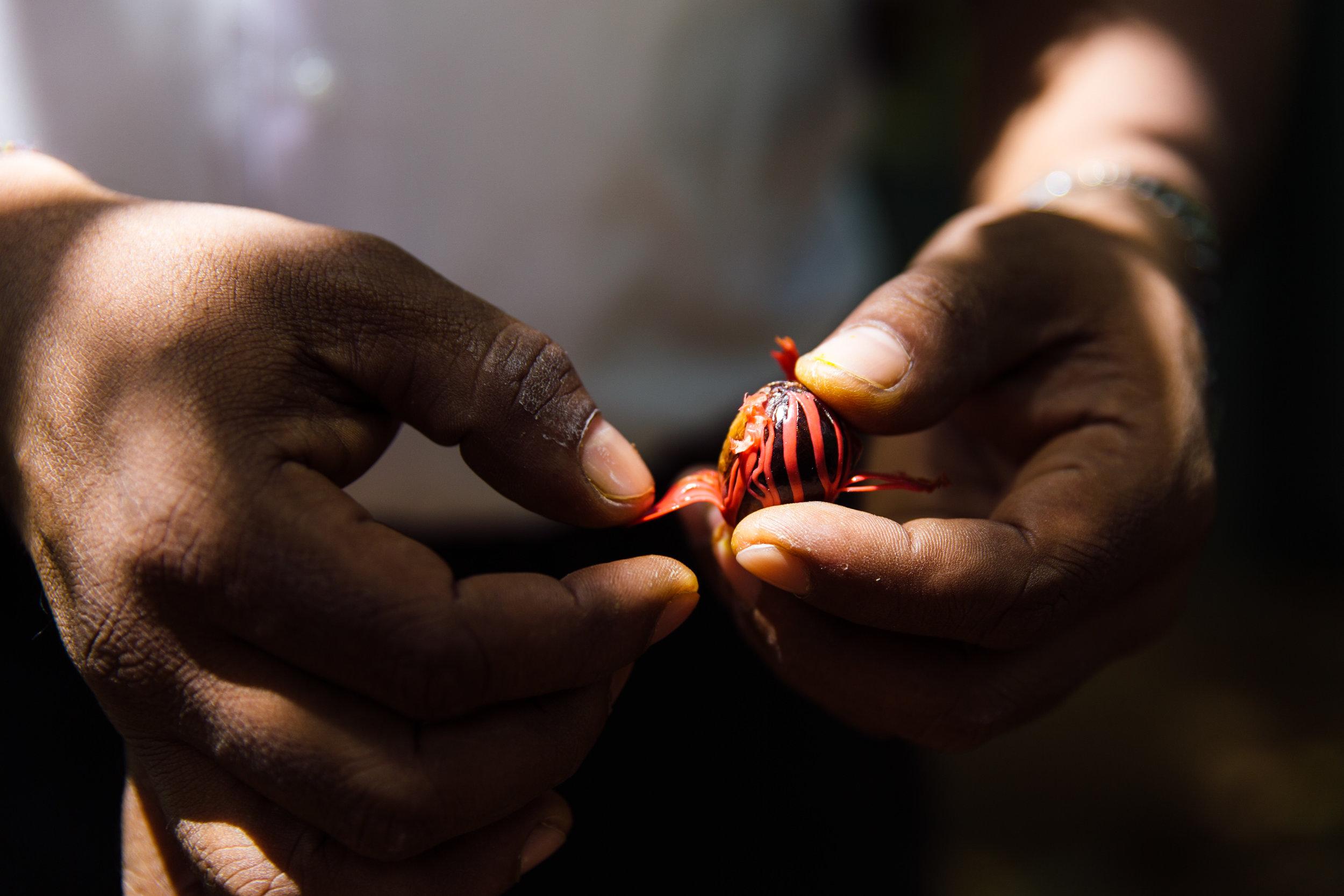 Delicious-SriLanka-PhotosCarolineMcCredie-Hi-62.jpg