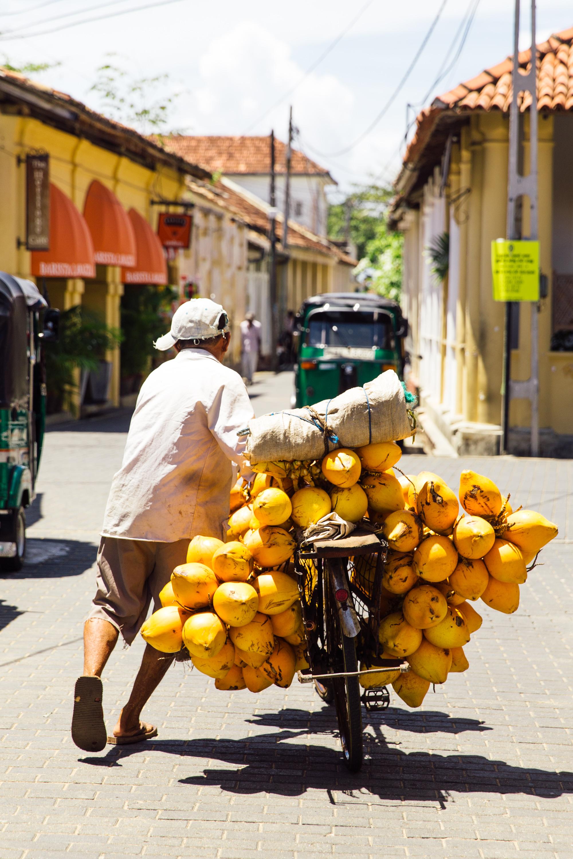 Delicious-SriLanka-PhotosCarolineMcCredie-Hi-266.jpg