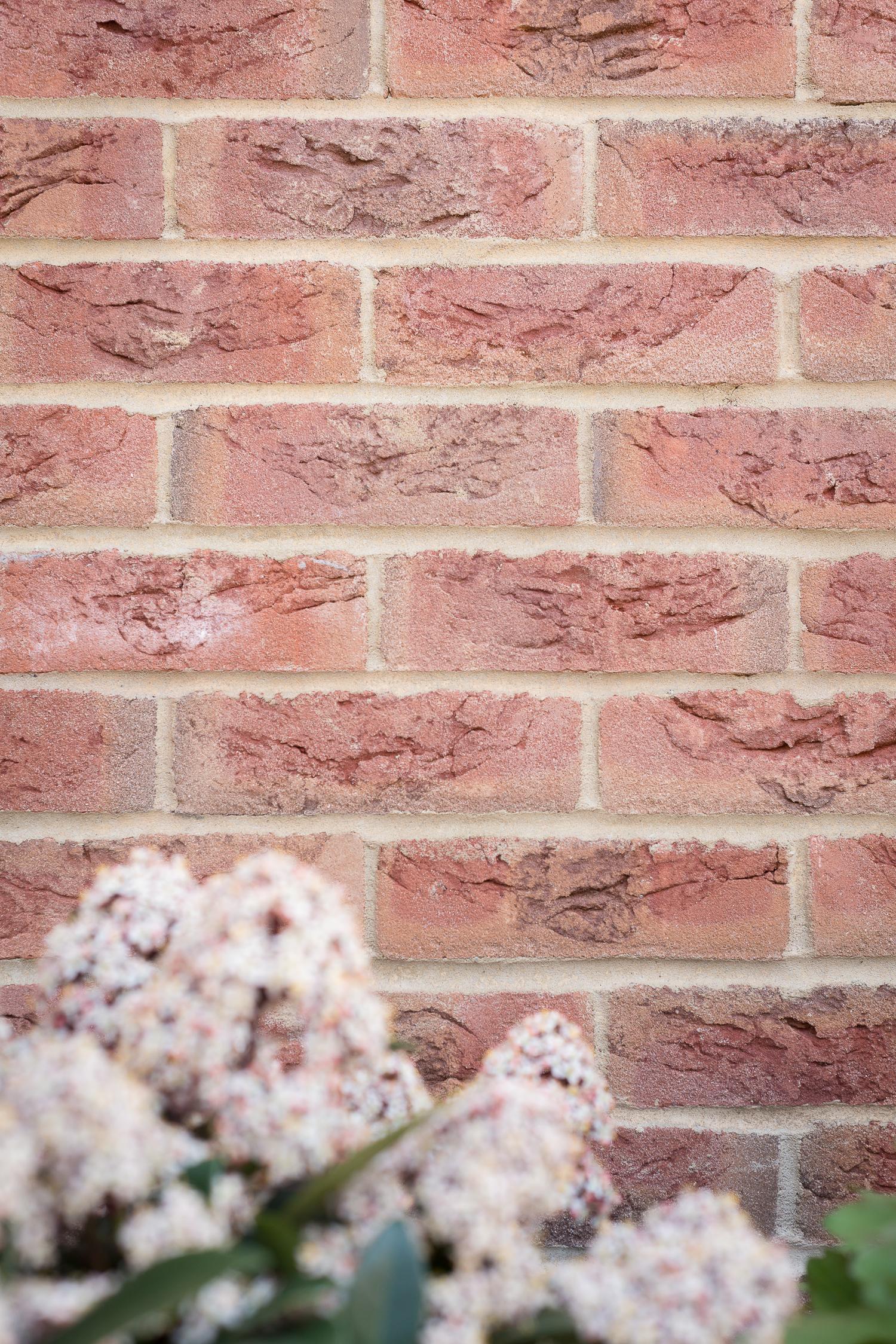 Brick Wall Detail