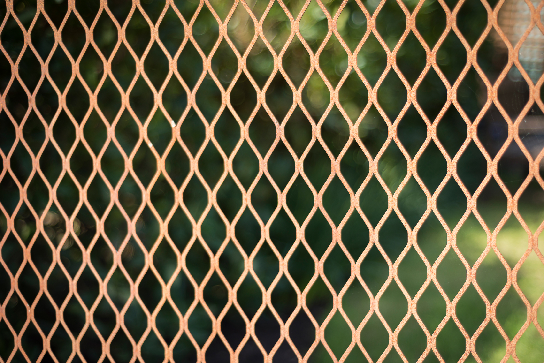 Rusted Mesh Fence Detail