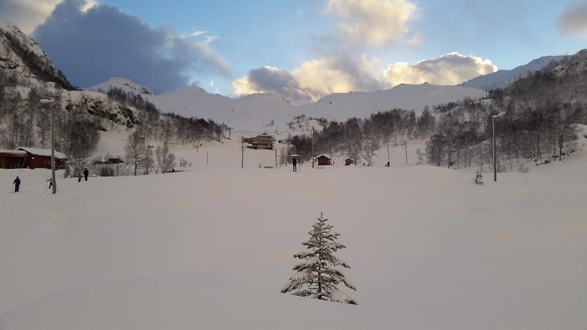 Jul og fine forhold i Fjellhaugen. (Foto: Knut Johannes Ripel)