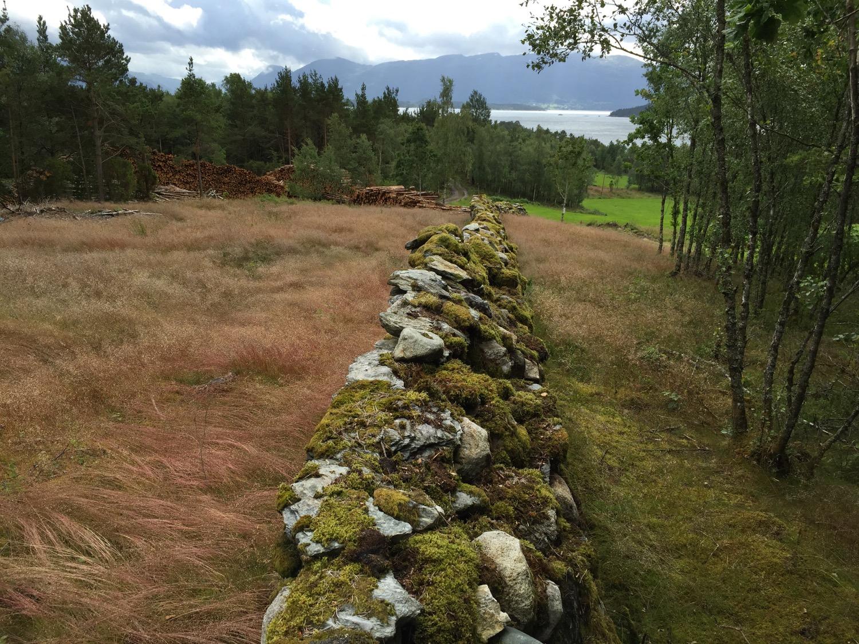 Bømuren på Sydnes er om lag vertikal i profil mot utmarka, medan han har ein meir skrånande profil mot innmarka.