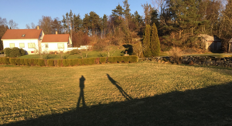 Vi startar det nye året med tur i vakkert vêr og vakker natur på Halsnøy. Dei lange skuggane minner oss på at vi er tidleg i januar og at vi må venta ei god stund enno før vi får kjenna sola varma.
