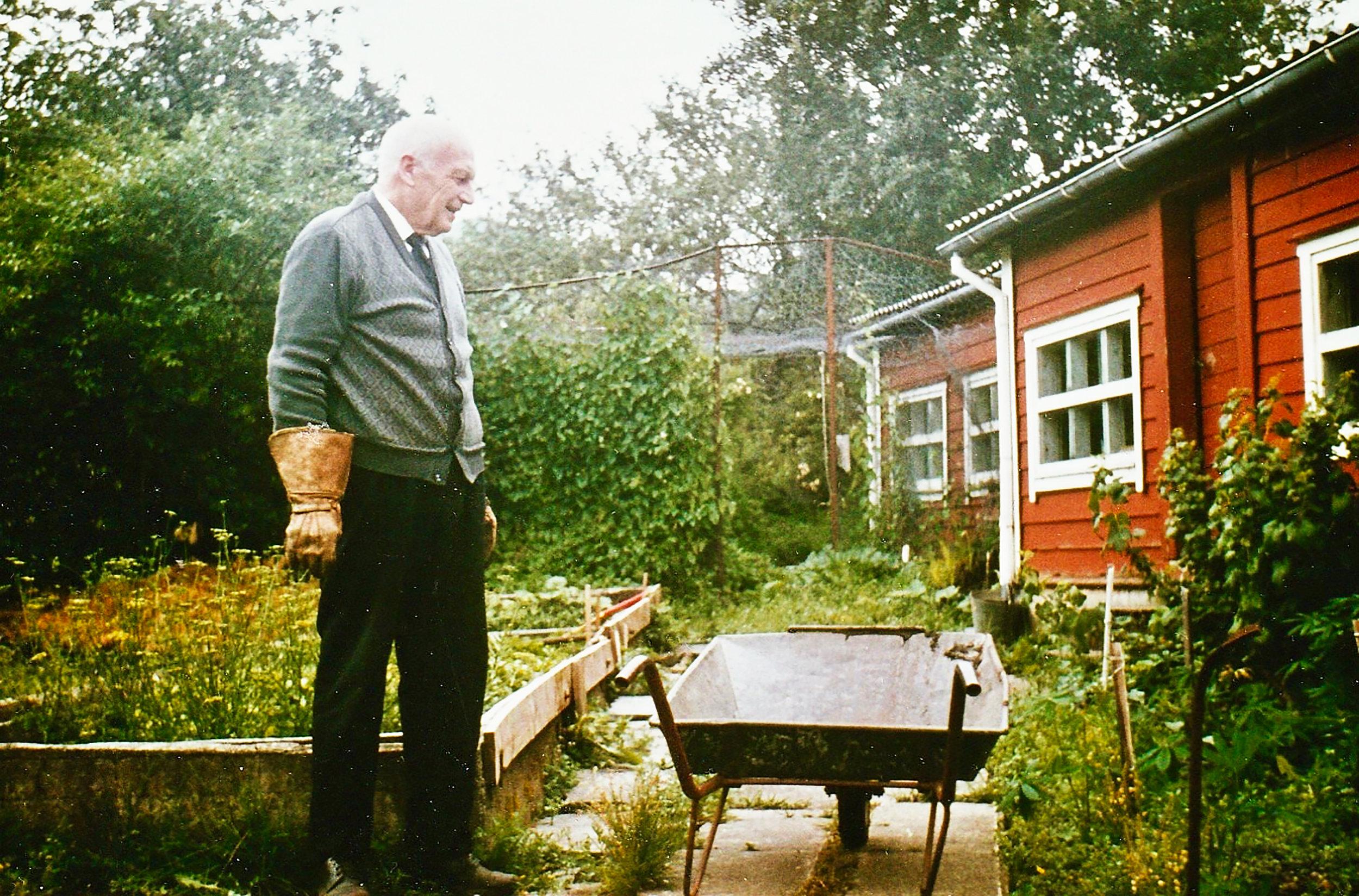 Haugen var alltid pen i tøyet, endatil når han dreiv med hagearbeid. (Ukjend fotograf).