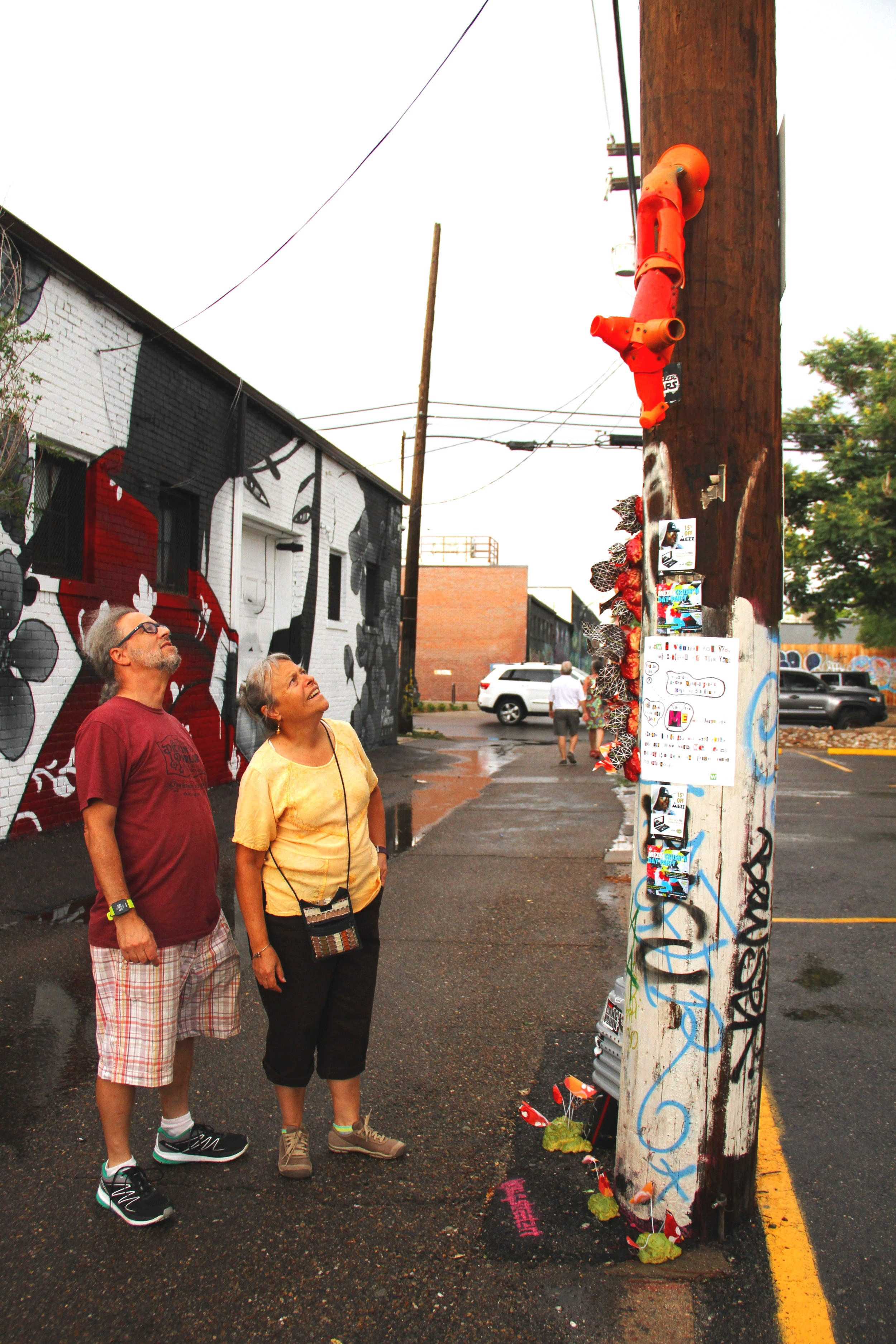 Sculptural pieces attached to electrical poles.