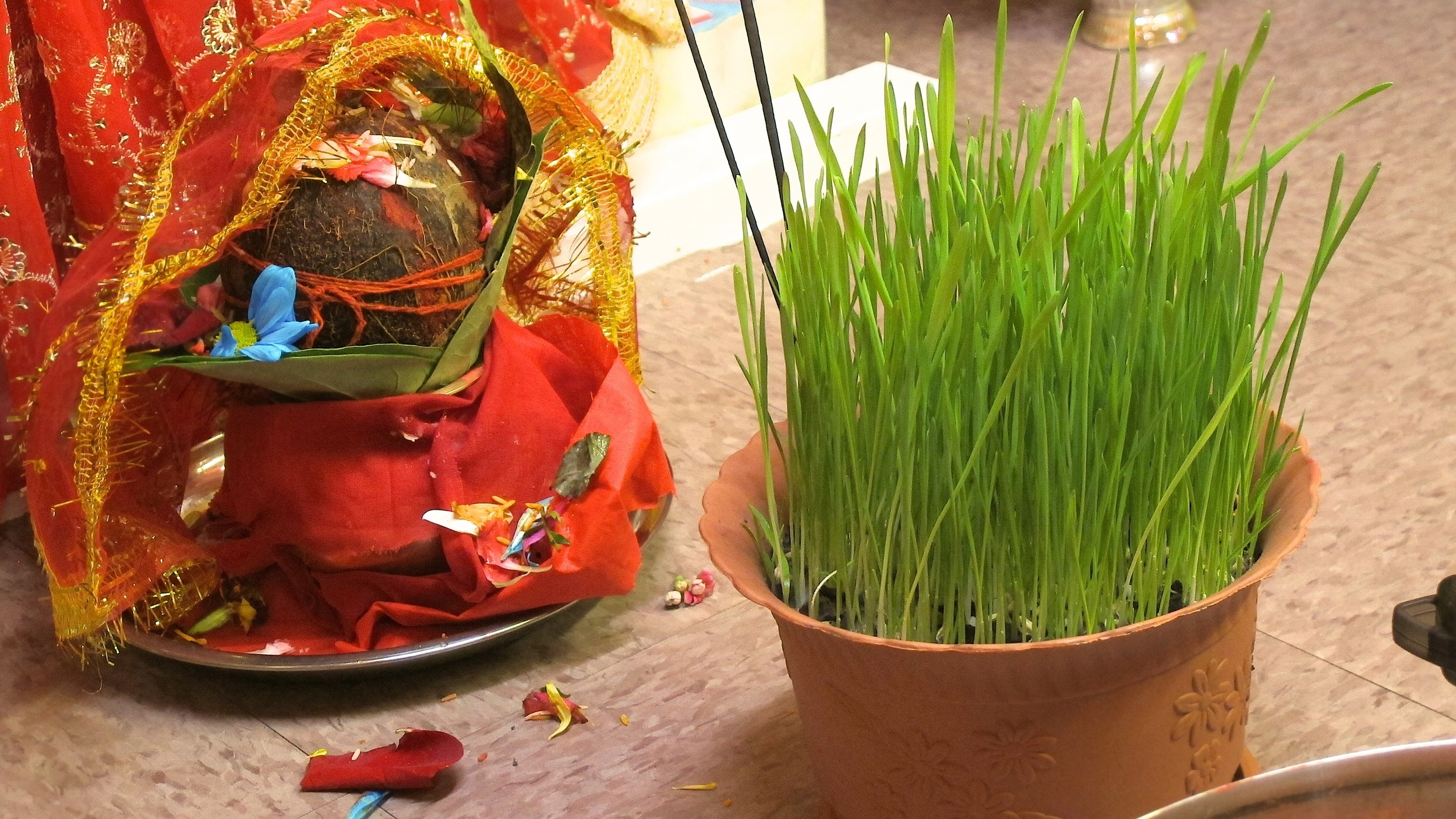 A coconut adorned in auspcious red cloth and covered in flowers symbloizing pooja to deity.