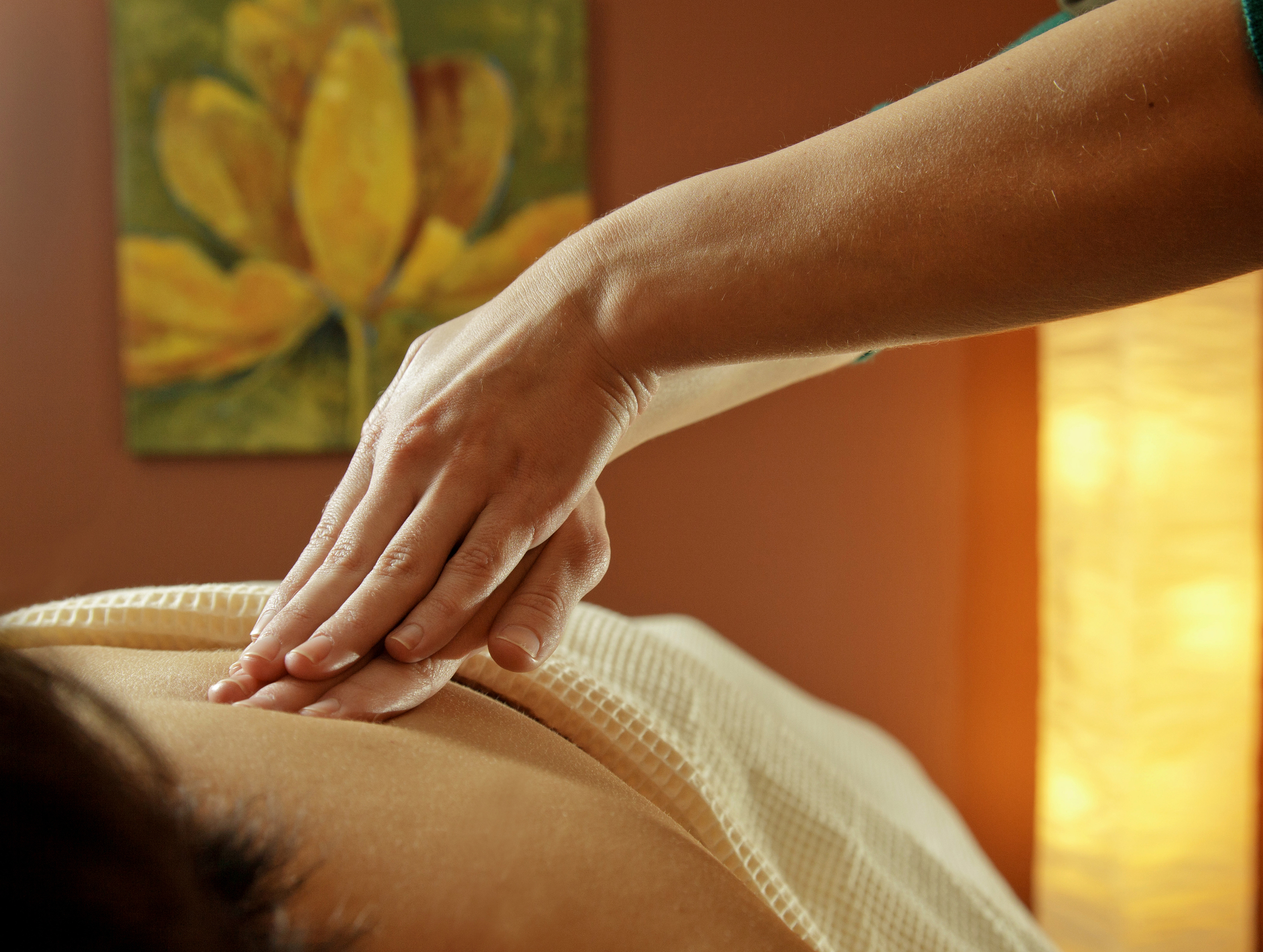 Tranquility Spa at Hotel Shanker