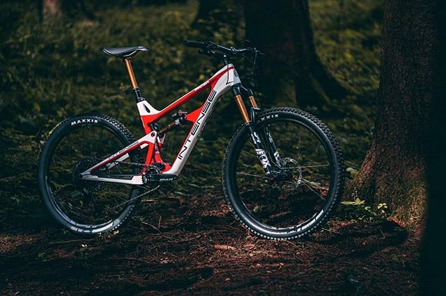"""Who else is excited about the new 2020 Primer from @intensecycles available in a 27.5"""", 29"""", and a mullet version👍 These bikes are sure to be nothing short of amazing!"""