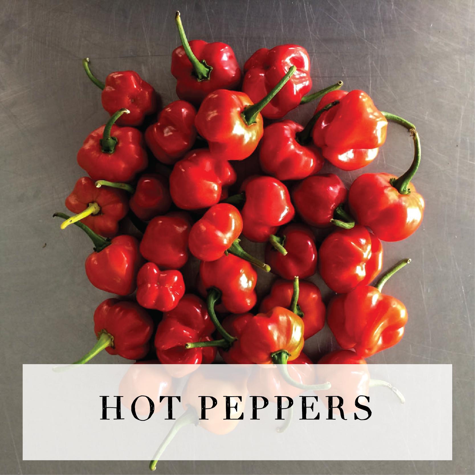 hotpeppers.jpg