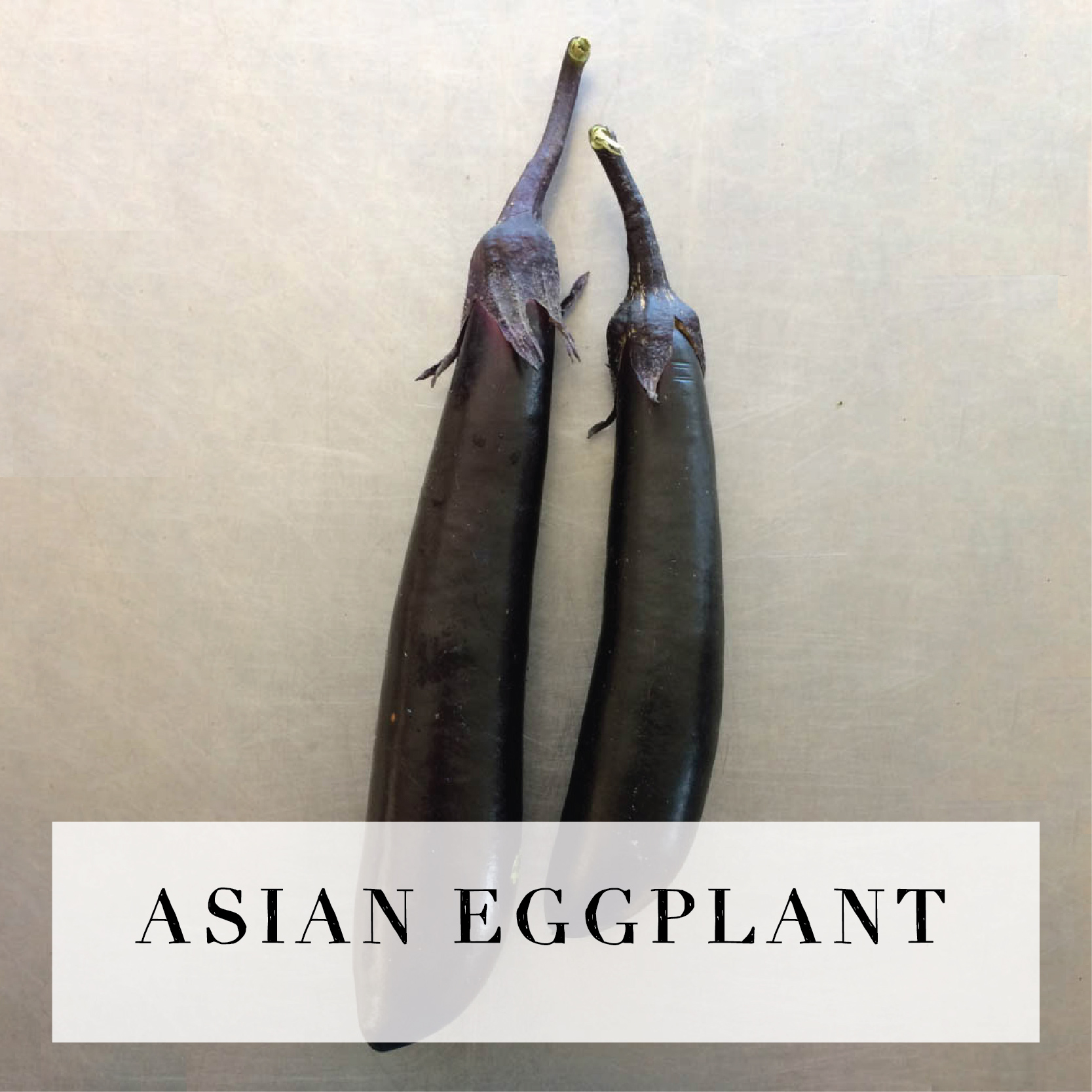 asianeggplant.jpg