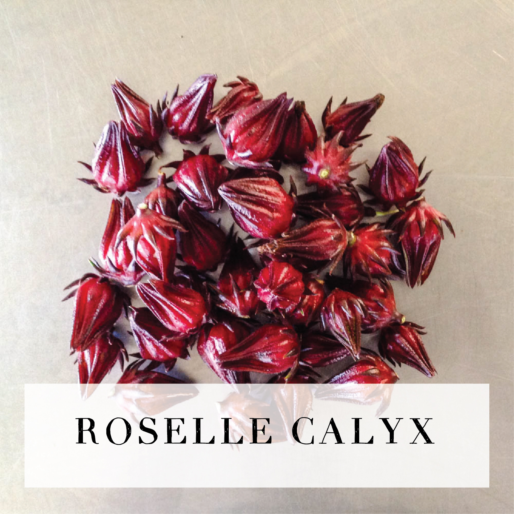 rosellecalyx.jpg