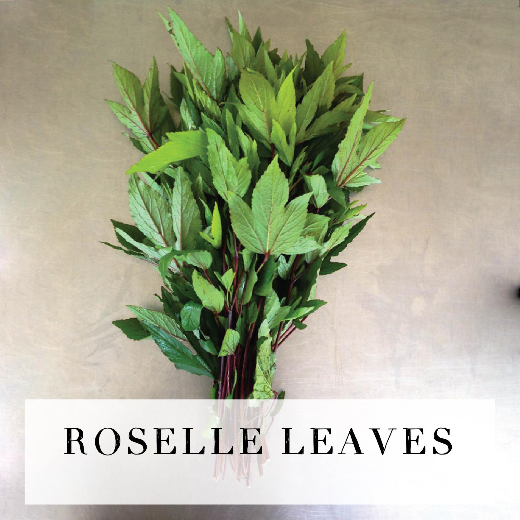 roselleleaves.jpg