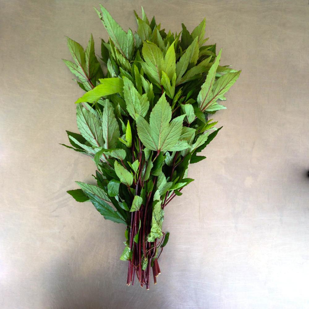 Roselle Leaves.jpg