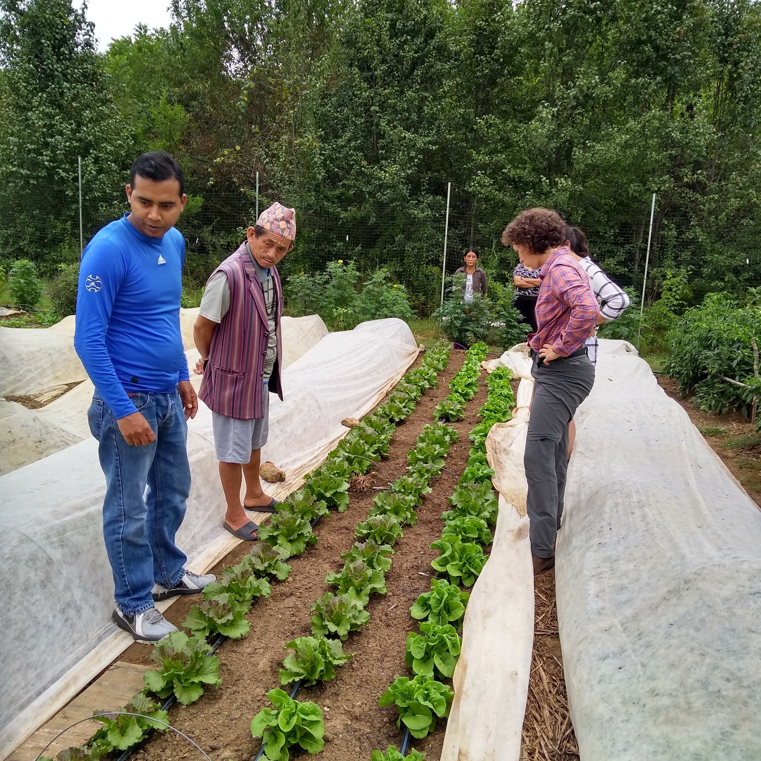 Siddi with Growing Together farmers and TNFP staff at the Haywood Lane garden.