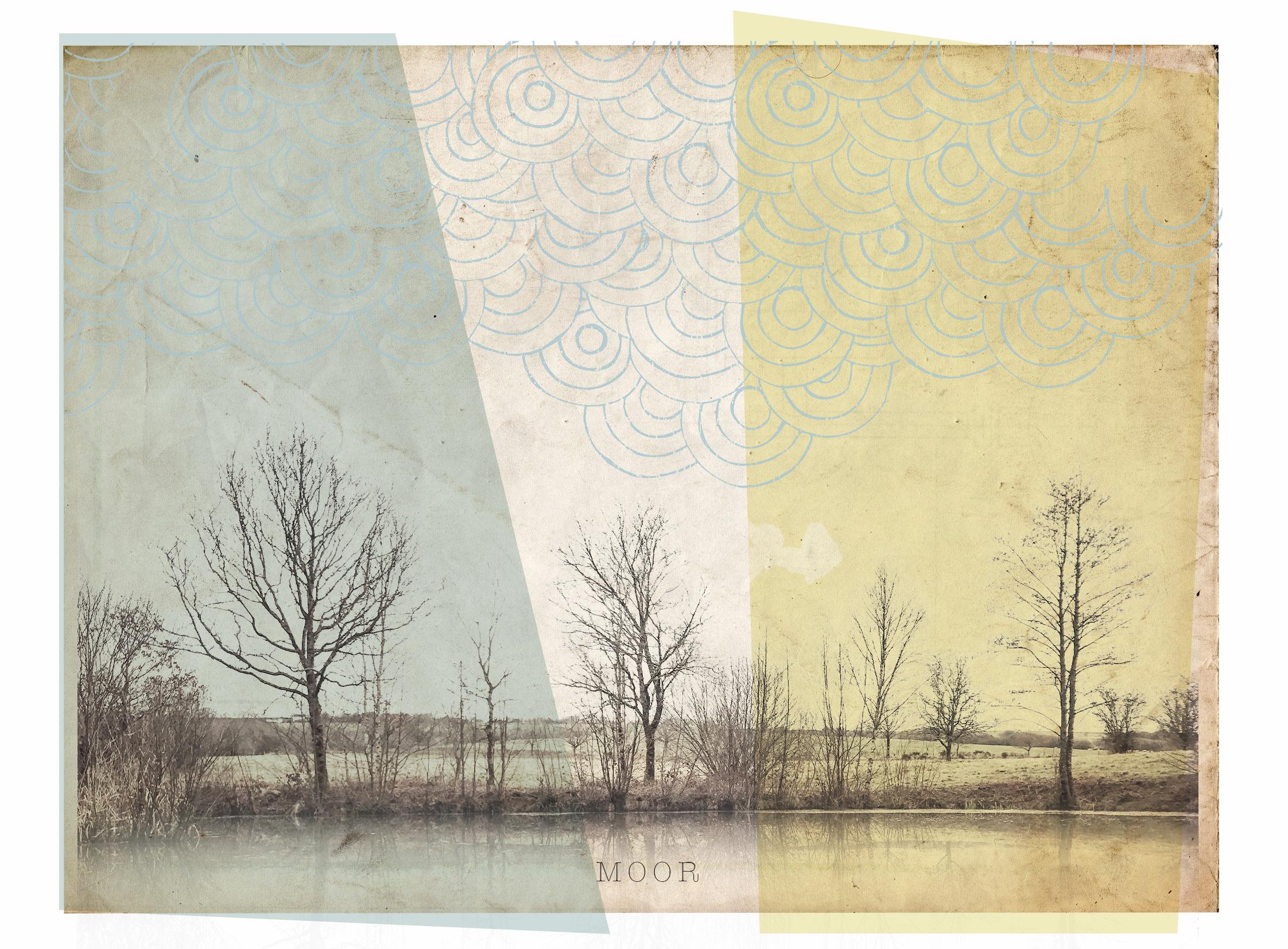 tree horizon.jpg