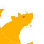 Earth Rat