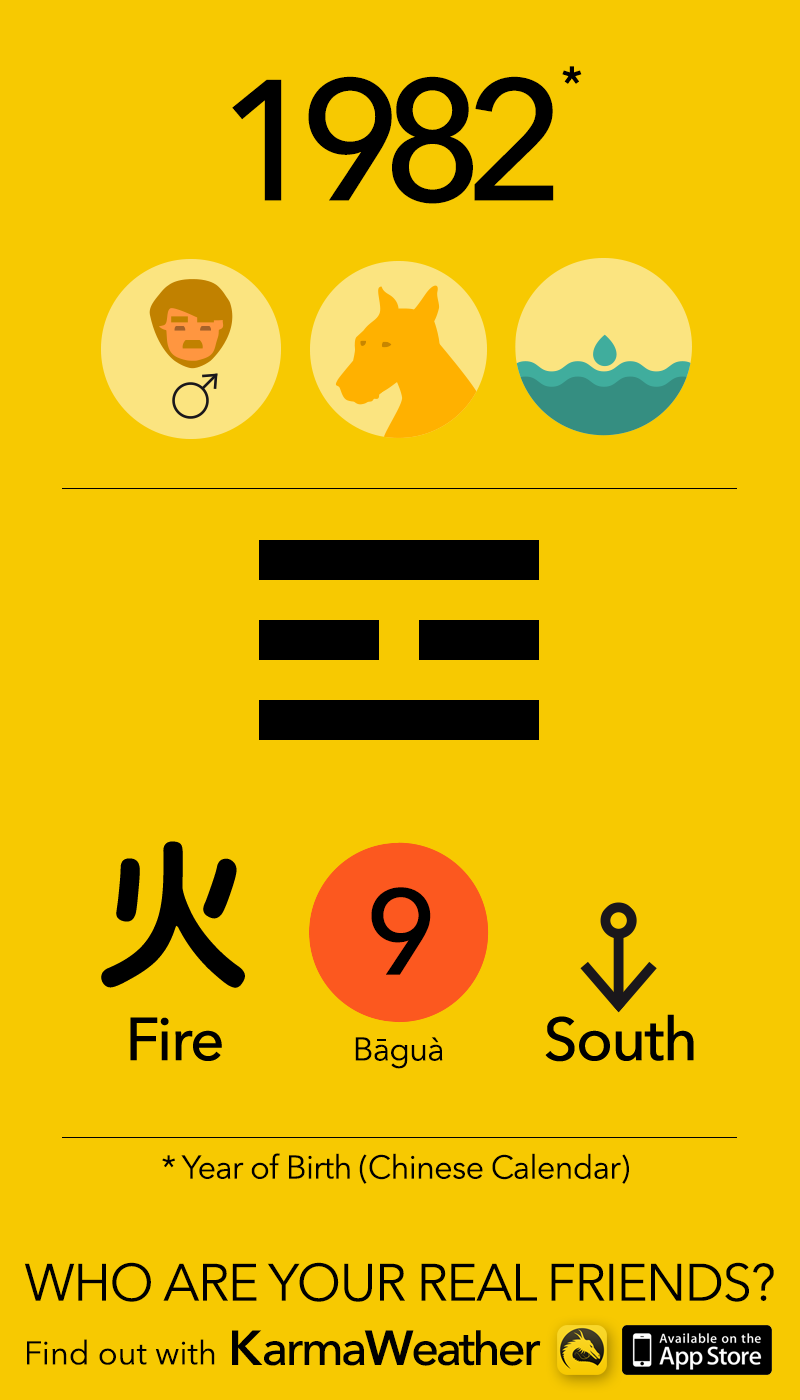 Feng Shui BaGua basics for men born in 1982, by KarmaWeather #Dog