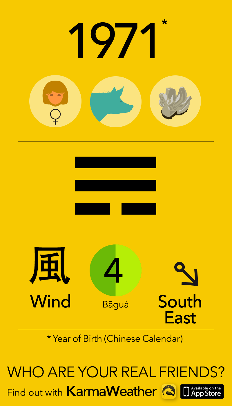 Feng Shui BaGua basics for women born in 1971, by KarmaWeather #Pig