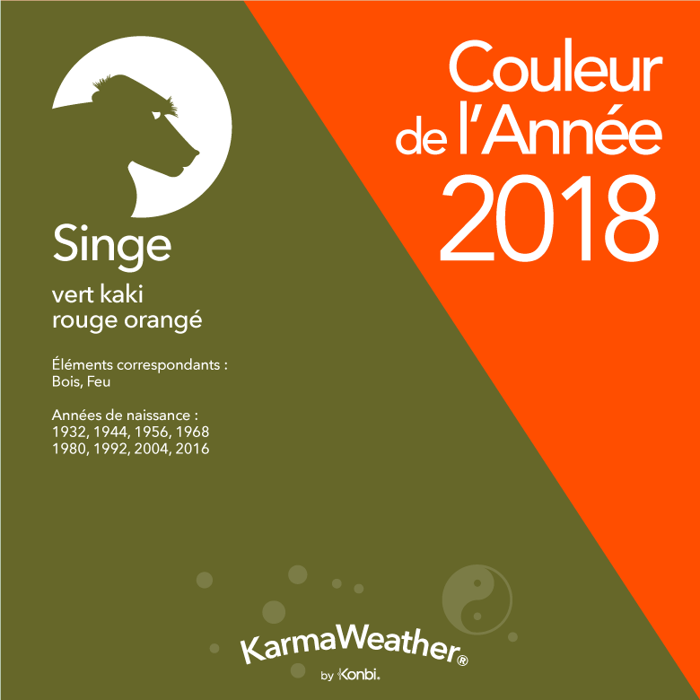 Couleur 2018 Singe